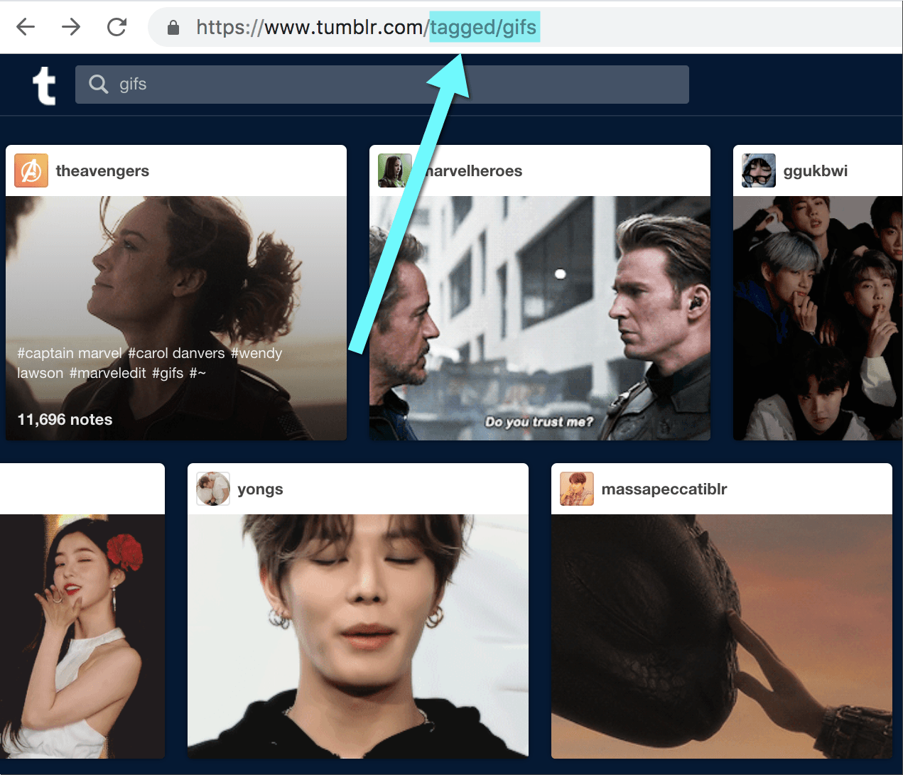 Tumblr tag search