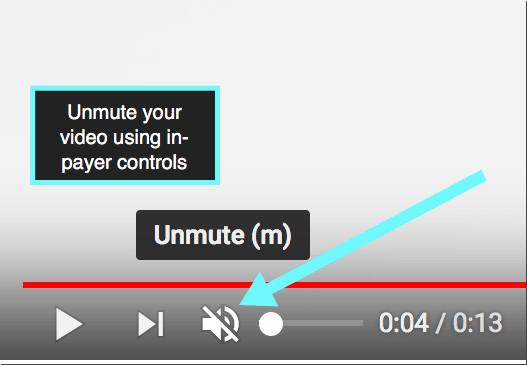 Check your video in-player is not muted
