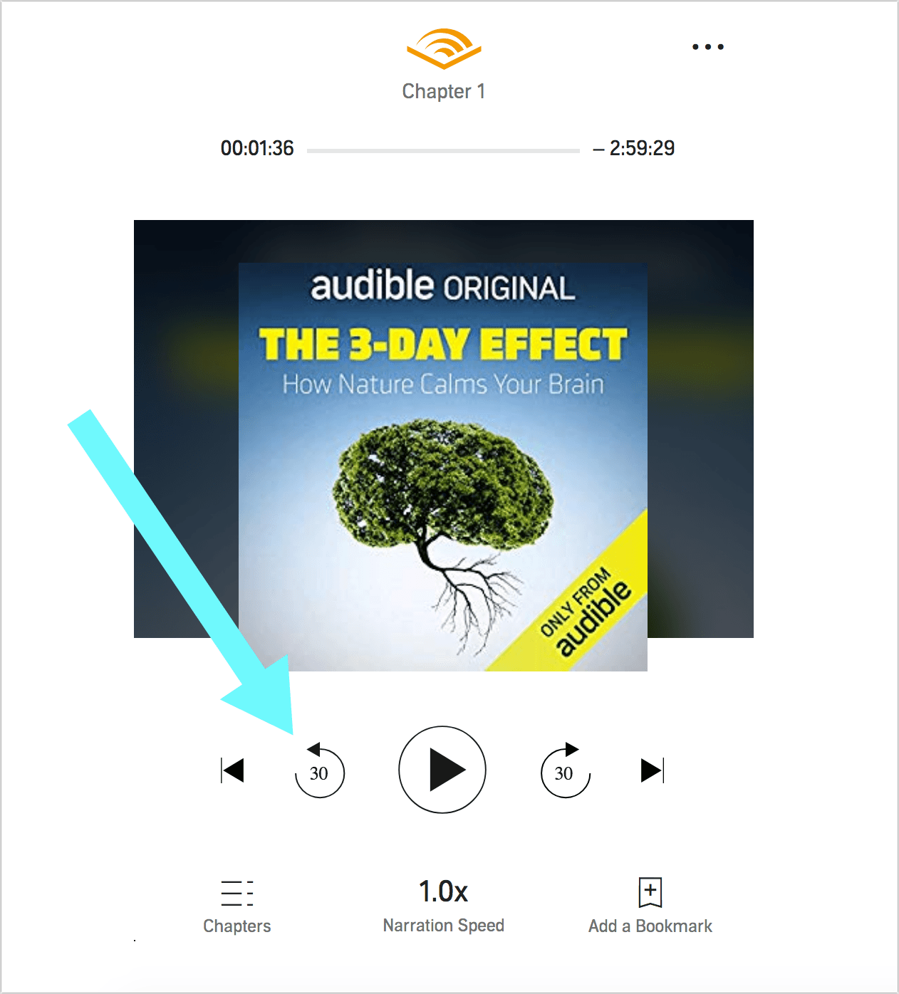 How to Audible Cloud Player