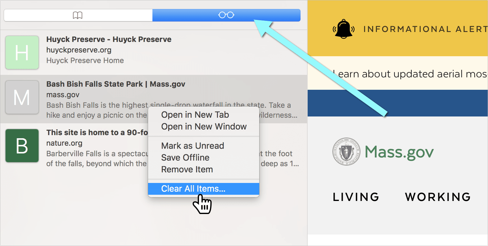 clear reading list on Mac
